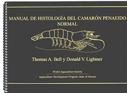 Picture of MANUAL DE HISTOLOGIA DEL CAMARó N PENAEIDO NORMAL